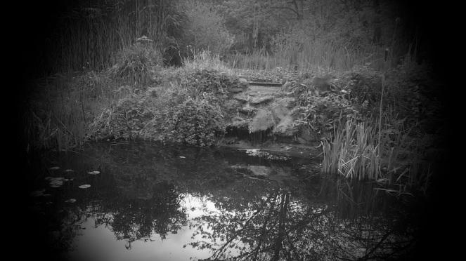 St Annes Well Gardens 3 B&W